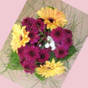 thumb-kvety11png